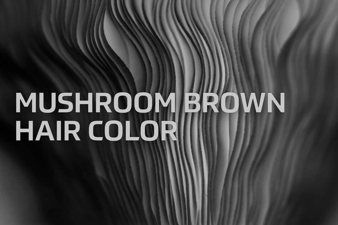Mushroom Brown Hair Color Formula Redken Shades Eq